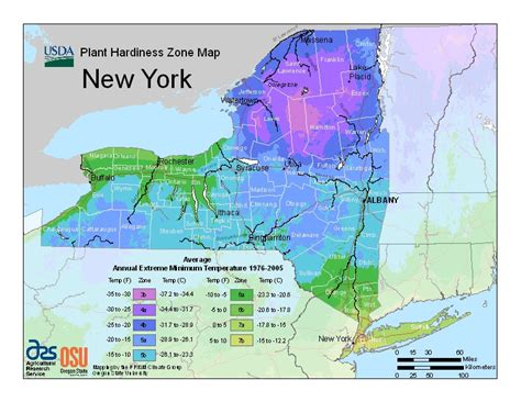 weather radar new york state map hardiness map greenscapes garden center landscape co