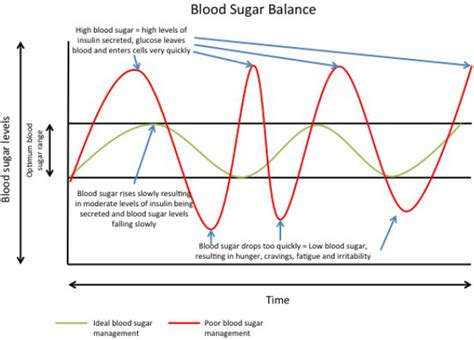 blood sugar swings what is considered high blood sugar in a dog special offer
