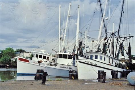 shrimp boat pne shrimp boats sweet home louisiana pinterest