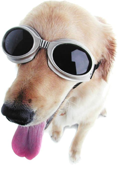 goggles for dogs doggles eyewear for dogs