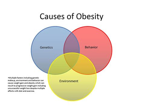 10 Causes Of Obesity by Causes Of Obesity Pictures Www Pixshark Images