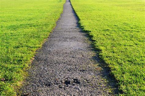 Rasen Sähen Wann 5628 by Richtig Rasen M 228 Hen Ein Guide F 252 R Einsteiger