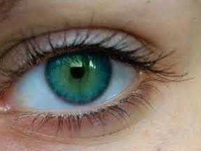 the rarest eye color eye color the most eye color pictures 1 look