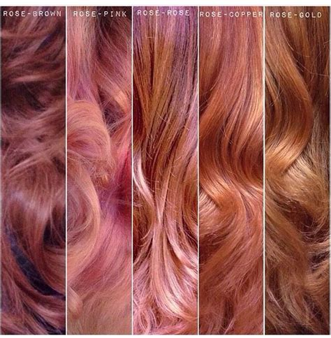 which hair color from sallys rose gold rose gold colors pinteres