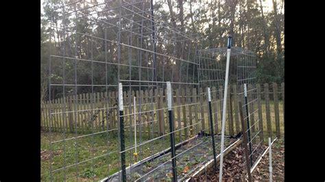 build  cattle panel garden trellis youtube