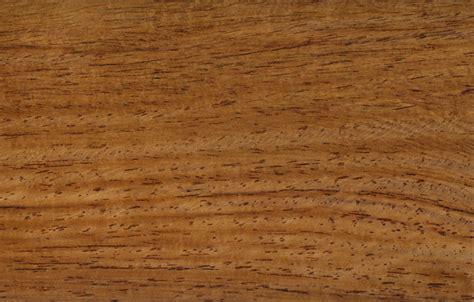 American Tulipwood Texture Image 16062 On Cadnav