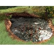 Diy Backyard Koi Pond Here Is Our That We Installed