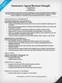 Insurance Resume Template by Insurance Resume Sle Resume Companion