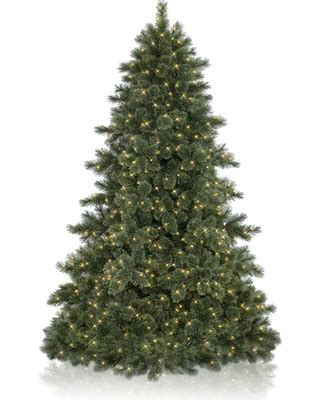 hudson valley trees artificial bargains 46 7 5 balsam hill hudson valley pine artificial tree clear