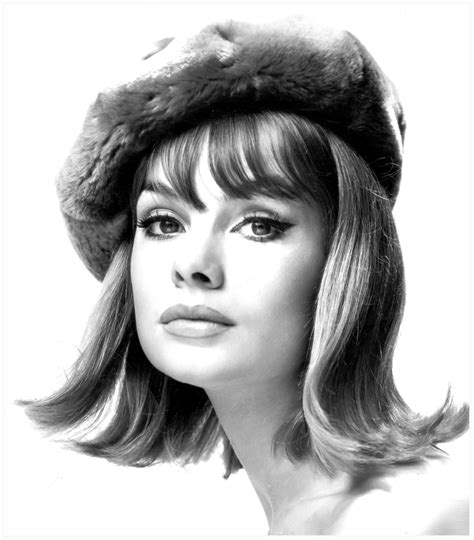 1960s models with hair jean shrimpton byron s muse