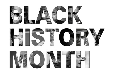 history collector hunt discover learn expert tips on how to care for and display your collections and turn your room into a cabinet of curiosities books northeastern s black history month to honor contributions