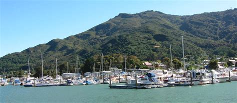 small boat tours new zealand havelock marlborough sounds new zealand offers tours
