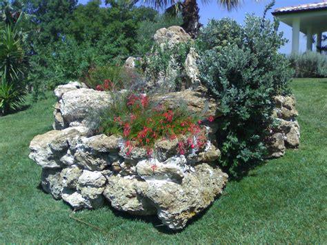 sassi per giardino roccioso piante grasse giardino roccioso uf57 187 regardsdefemmes