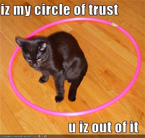 Circle Of Trust Meme - cats don t have buttons way of cats blog