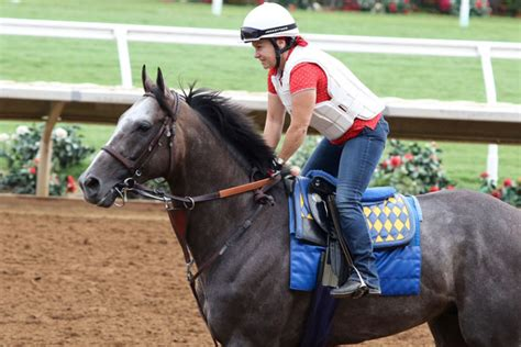Horse of the World Arrogate Faces Five in TVG San Diego