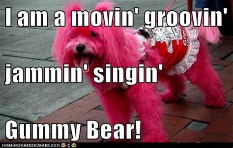 Gummy Bear Meme - gummy bear cake memes