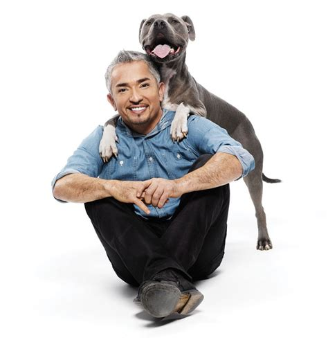 how to the cesar millan how to talk to dogs according to whisperer cesar millan