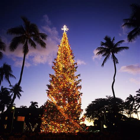christmas in hawaii mele kalikimaka hawaii tee times