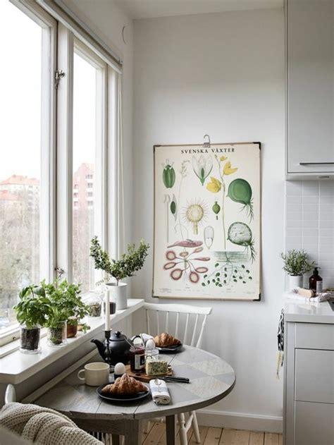 beautiful ways  decorate indoor plant  living room