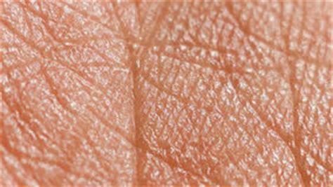 macro texture of burns on human skin back stock photo 415678729 human skin stock photo image of dermatology hydration 10876524