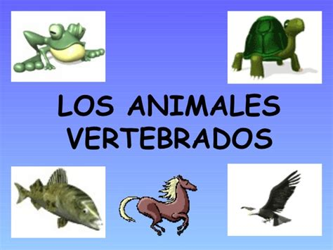 Los Animales Vertebrados | los animales vertebrados ud5