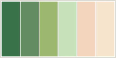 green combination 17 best images about color schemes on pinterest green