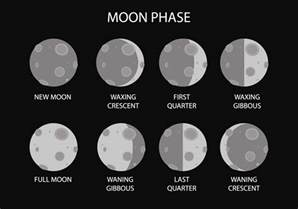 moon phase free moon phase vector download free vector art stock graphics images