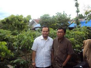 Pupuk Nongfeng Jambu Air telaga nursery september 2011