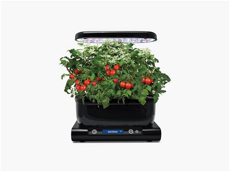 miracle gro aerogarden harvest wi fi review easy indoor