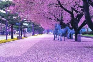 十和田市春まつり 終了しました 青森県観光情報サイト アプティネット