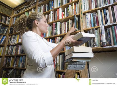 my is a librarian books librarian arranging books at library royalty free stock