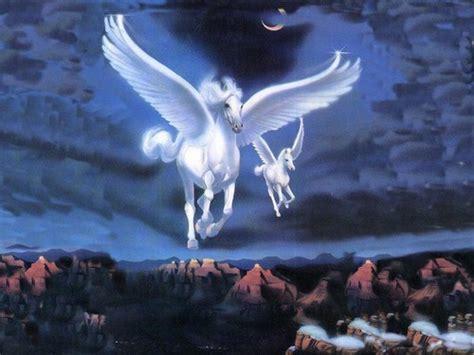 imagenes unicornios y hadas imagenes de hadas y unicornios imagui