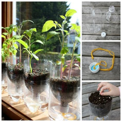 creative ideas creative ideas diy self watering seed starter pots from