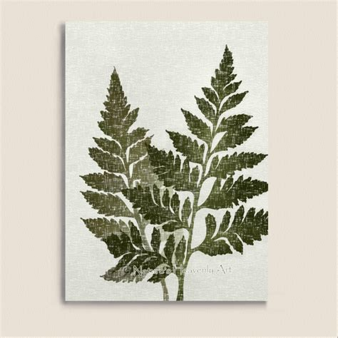 fern decor green fern art 5 x 7 print vintage style natural wall decor