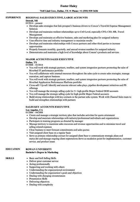 account executive resume sles sales accounts executive resume sles velvet