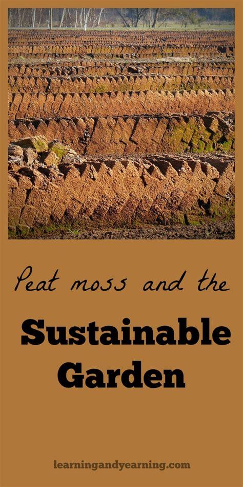 peat moss   sustainable garden