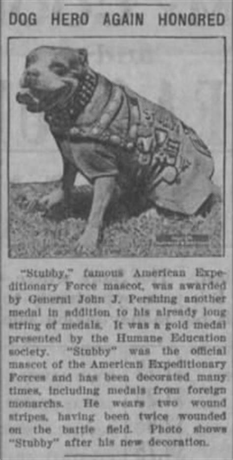Sergeant Stubby Info Sergeant Stubby Person Pictures And Information Fold3