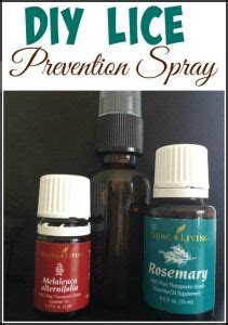 ideas  lice prevention  pinterest young living lice head lice prevention