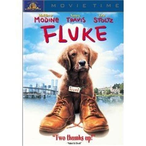 matthew modine dog movie 1000 images about fluke on pinterest nancy dell olio a