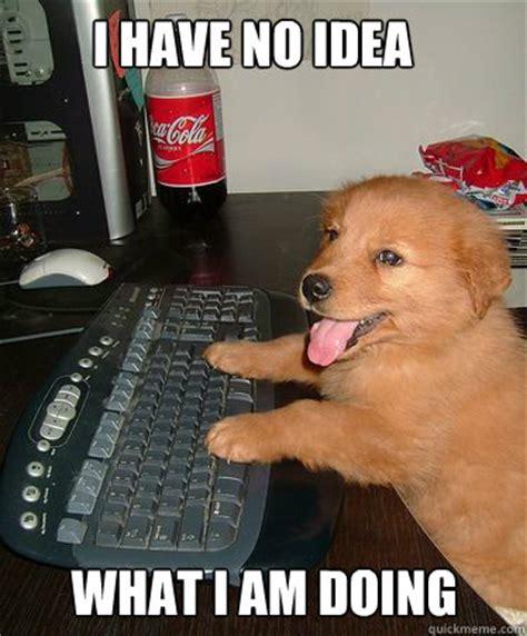 No Idea Meme - image 305209 i have no idea what i m doing know