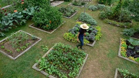 Planning A Kitchen Garden: Site and Design   Reboot With Joe