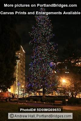 esther short christmas tree vancouver wa 2010 portland