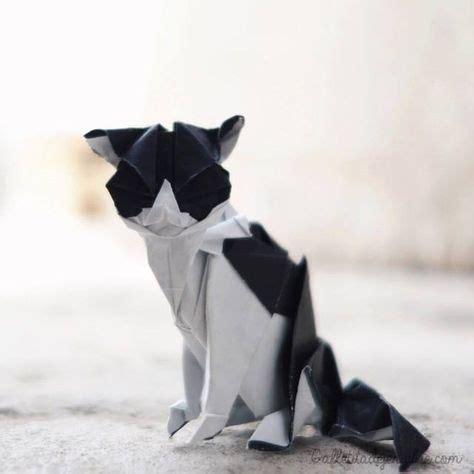 Origami Kitten - las 25 mejores ideas sobre gatos de jengibre en