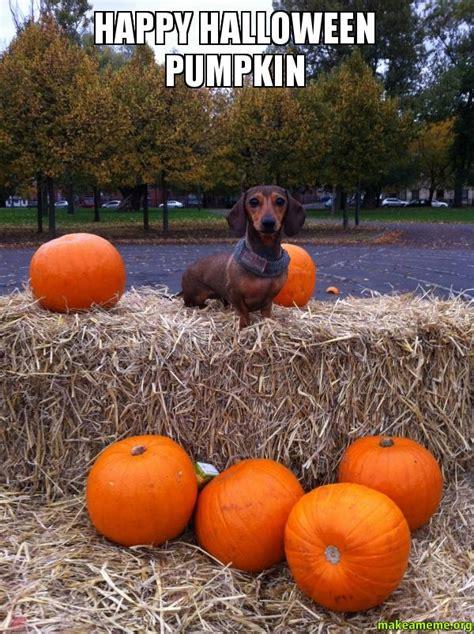 Happy Halloween Meme - happy halloween pumpkin make a meme
