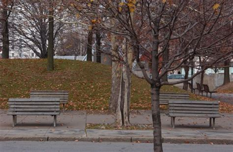 the park bench rochester ny park benches manhattan square park rochester ny nov 17th