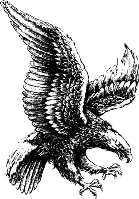 eagle tattoo png black and white flying eagle tattoo design tattooimages biz