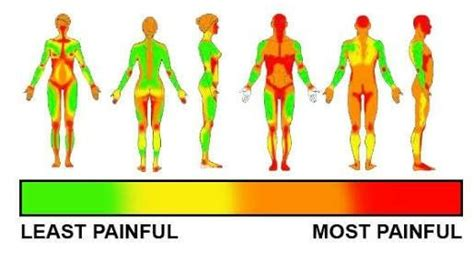 tattoo pain scale chart chart scale