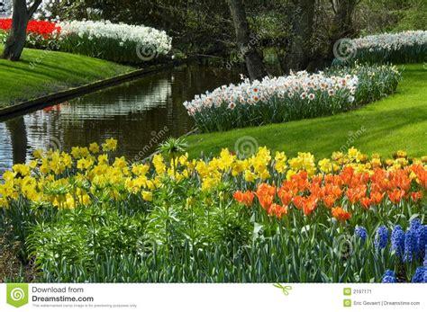 flower garden  spring stock image image  culture