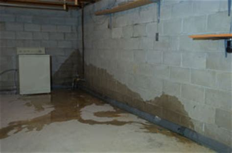 got water or moisture in your basement here s some common