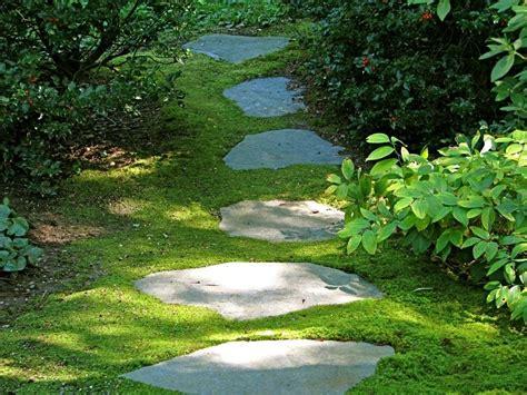 viali giardini viali giardini elementi progettazione giardini